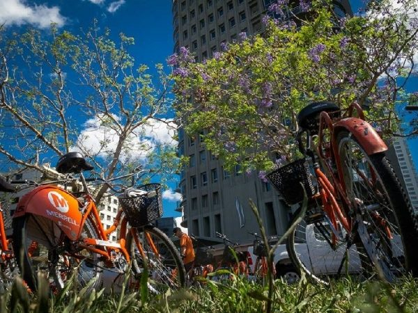 Buenos Aires Bike Tour: North District