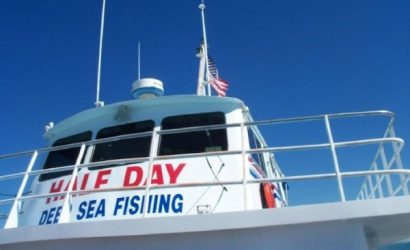 Deep Sea Fishing Sealife Tour - Gulf Of Mexico