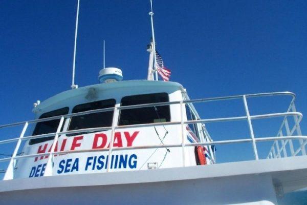 Deep Sea Fishing Sealife Tour - Gulf Of Mexico