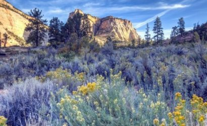 7-Day Zion National Park, Horseshoe Bend, Grand Canyon West and Bryce Canyon Tour