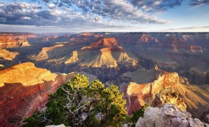 1-Day Bus Tour to Grand Canyon South Rim National Park from Las Vegas