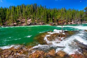 7-Day Yellowstone, Mt.Rushmore, Las Vegas Tour with airport transfer