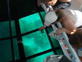 Hawaii Glass Bottom Boat Tours