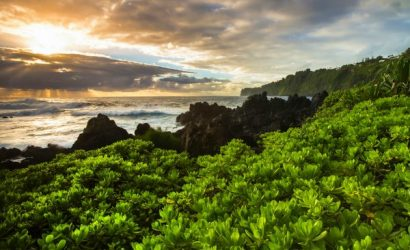 6-Day Hawaii Tour Package From Hilo: Oahu, Big Island and Maui