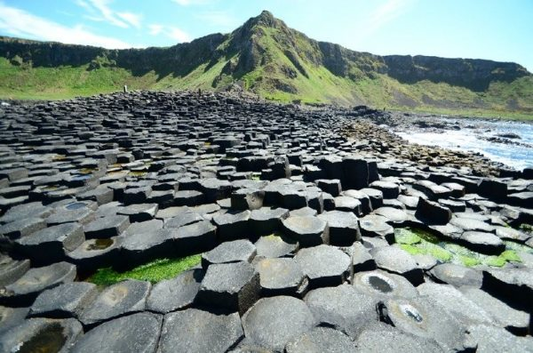 Game of Thrones Location Tour from Belfast with Giant's Causeway