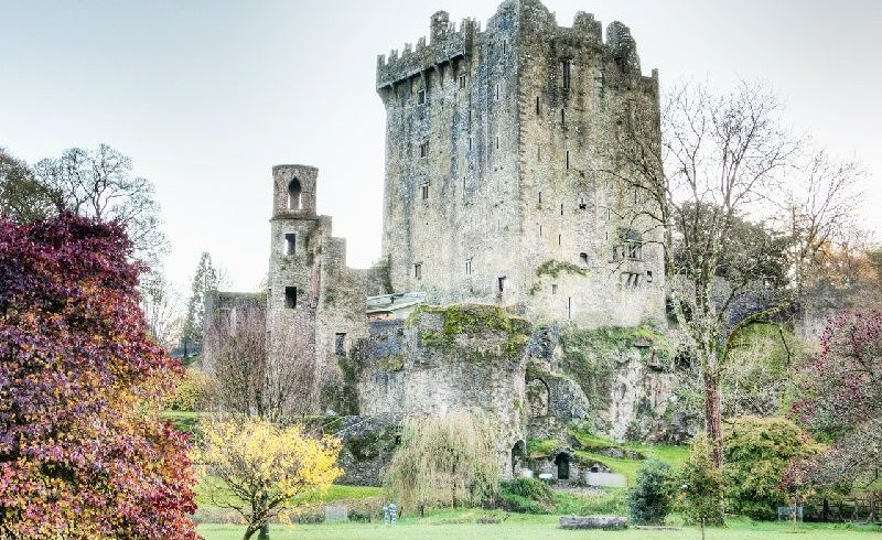 Blarney Castle and Rock of Cashel Small Group Tour from Dublin