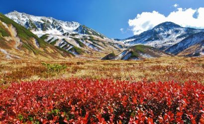 3-day Japan Alpine Route Tour from Tokyo: Kurobe Gorge Railway and Kamikochi