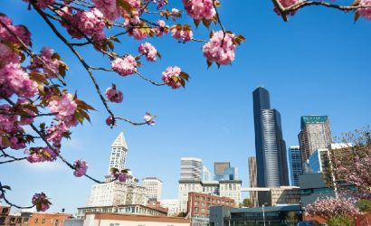 4-Day Seattle Tour: Seattle City Tour, Mt. Rainier National Park, Snoqualmie Falls