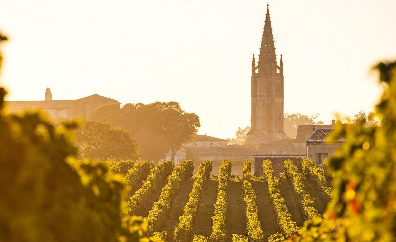 Bordeaux and Saint-Emilion Wine Tour from Paris by Train