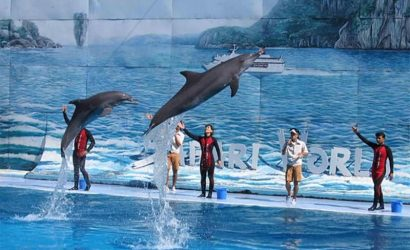 Safari World and Marine Park Tickets and Transfer with Buffet Lunch