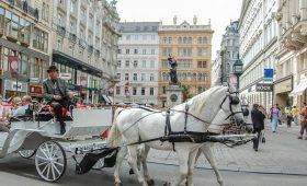 Moving around Vienna underground, trams, buses and more